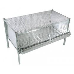 Cages pour Poussins
